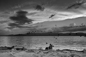 August 2014 Joshua Tree & Salton Sea-1353