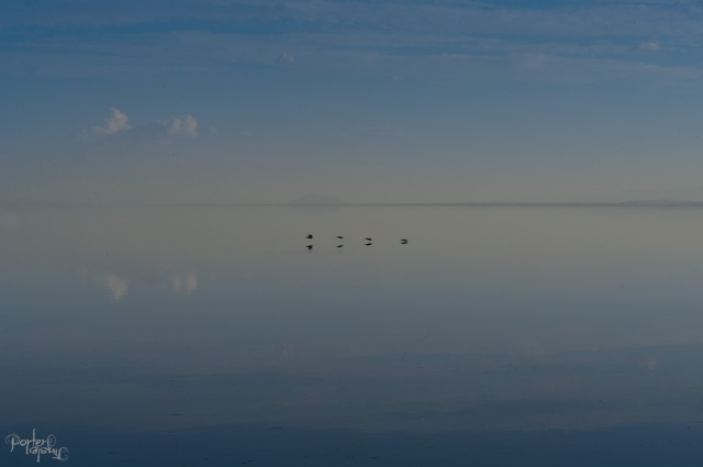 September 2014 Salton Sea-1731