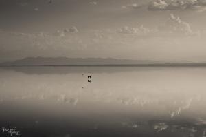September 2014 Salton Sea-1747