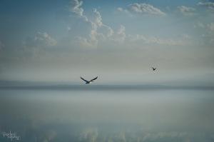 September 2014 Salton Sea-1821