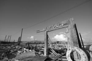 September 2014 Salton Sea-1903