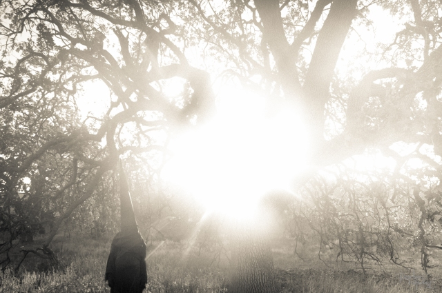 October 2014 Cheseboro Canyon Occult Second Edit-3405