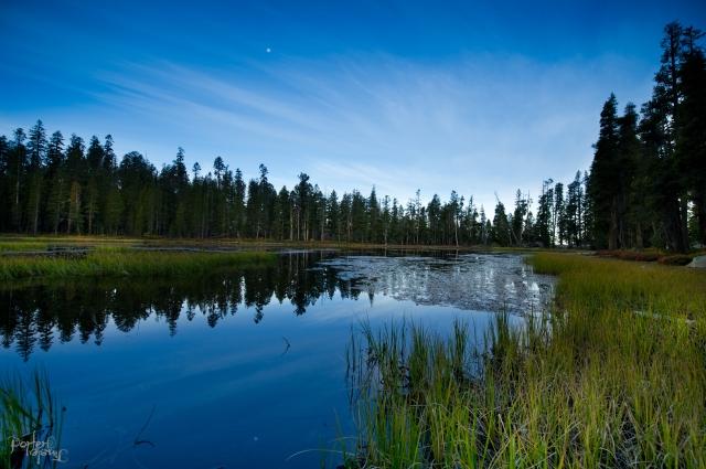 October 2014 Yosemite-3064