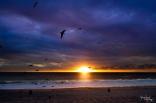 November 2014 Zuma Beach Edited-3506-2