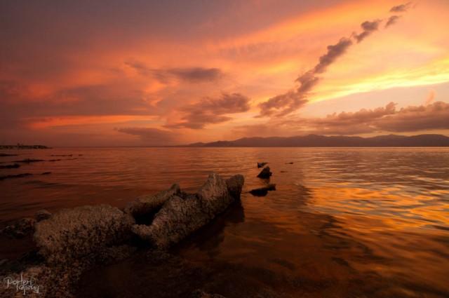 August 2014 Joshua Tree & Salton Sea-1425