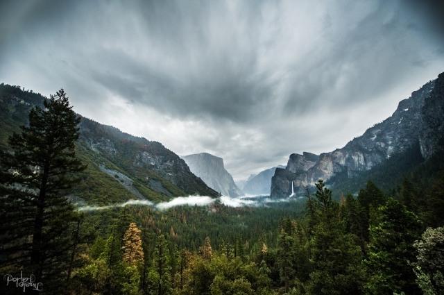 April 2016 Yosemite d3s2016DSC_4687